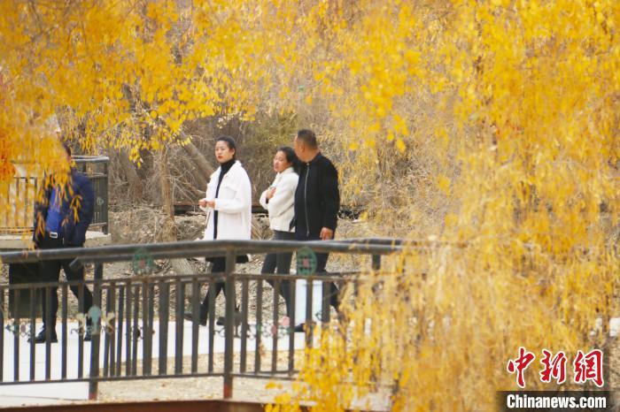 新疆沙雅县休闲度假火了村子富了村民
